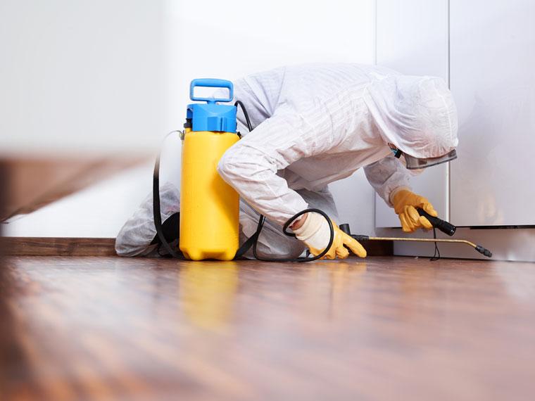Desinfektionen im Wohnbereich durch AS Umwelthygiene